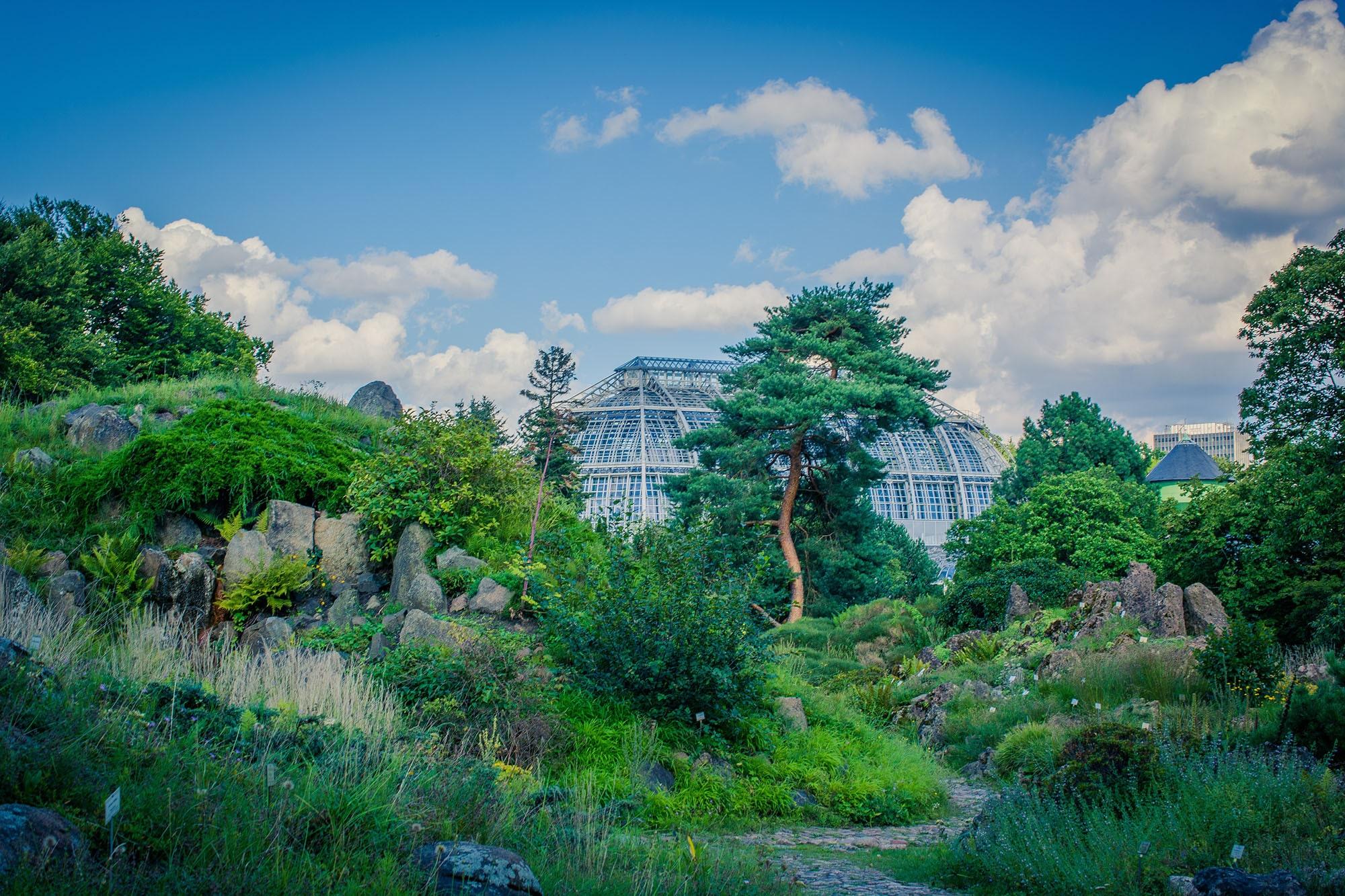 New York Botanical Garden | Limousine service limo-house.com